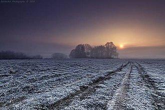 Obrazy - Silence Tells More XI - 4887882_