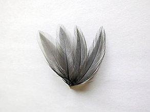 Suroviny - Pierka sliepka šedé  4 ks - 4902821_
