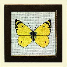 Obrazy - Vyšívané motýle (2) - 4907533_