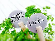 Dekorácie - ZAPICHOVAČKY neOBYČAJNÉ - 4923345_