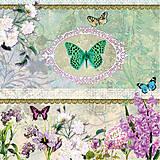 - motýľ - 4926385_