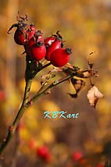 Fotografie - Šípky - 4929816_