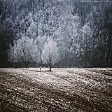Obrazy - Location:Silence (Part.IV.) - 4935758_