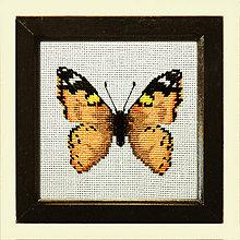 Obrázky - Vyšívané motýle (5) - 4989622_