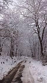 Fotografie - Snehový tunel - 5019525_