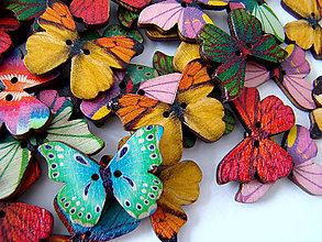 Galantéria - gombík - motýlik / 1KS - 5025125_