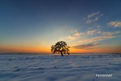 Fotografie - ...mrazivý večer... - 5056764_