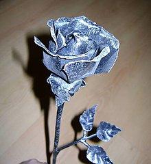 Socha - kované ruže - 5056235_