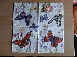 Papier - motýliky 1 - 5069808_
