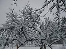 Fotografie - Tohtoročné posledné sneženie  - 5074396_