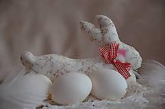 Dekorácie - Zajac - 5111548_