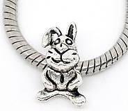 Pandorková korálka zajačik