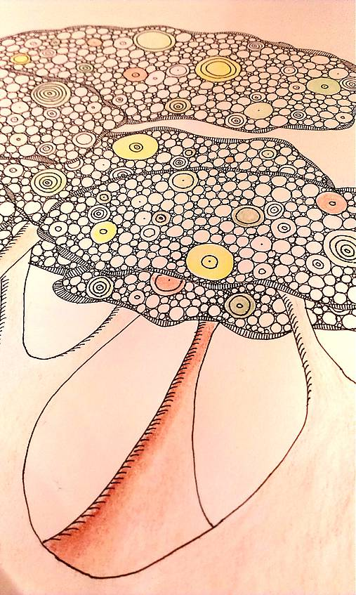 Malost Cloveka Veľkost Prirody Baoba A Ona Bubl Sashe Sk