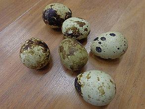 Dekorácie - Prepeličie vajíčko - 5120203_