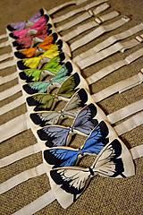 - Motýlek - bílý s motýlem - 5131499_