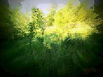 Grafika - Botanická záhrada - 5178870_