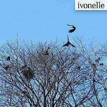 Fotografie - Výjazdové zasadnutie v Poprade - fotografia - 5184341_