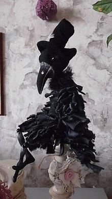 Bábiky - havran čierny - 5209193_