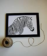Obrazy - Zebra I. - 5221669_