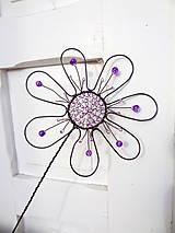 kvet..Fialkovček obyčajný...zápich