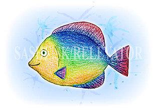 Papiernictvo - Podložky pod zošit Morský svet (dúhová ryba) - 5232577_