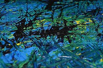 Obrazy - synapsie II. - 5308261_