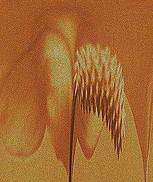 Grafika - Nový život - 5308081_