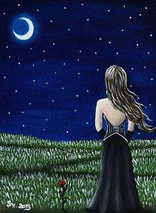 Obrazy - The night - 5319678_