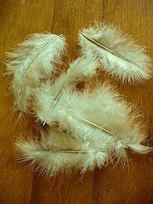 Galantéria - marabu smotanové - 5318139_