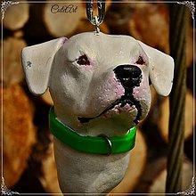 Kľúčenky - Argentínska doga - podľa fotografie - 5317509_