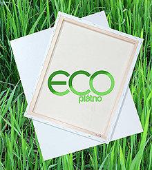 Polotovary - Maliarske plátno na ráme EKO 40 x 50 cm   PXE40X50 - 5347986_