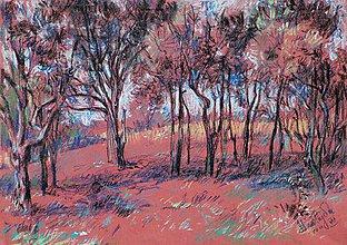 Obrazy - Medzi stromami - 5353482_