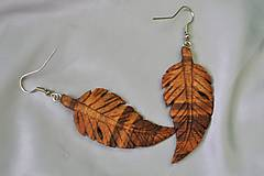 Náušnice - Feathers - Drevené náušnice - 5358600_