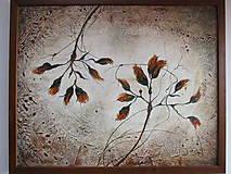 Obrazy - Botanika - 5363412_