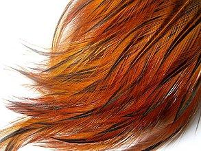 Suroviny - 1-2*27 Pierka s oranžovým koncom,jemné- 4ks - 5393205_