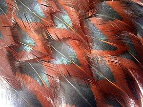 Suroviny - 1-2*28 Čierno-červervené špic. prírodné- 2ks - 5393625_