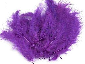 Suroviny - Pštrosie perie 20 ks (tmavo fialové) - 5392319_