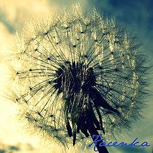 Fotografie - Fúkni... - 5407434_