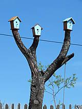 Dekorácie - ...vtáčí úlet... - 5414048_