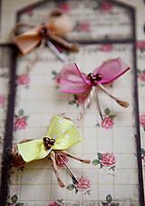 Pierka - Originálne svadobné pierka pre hostí #3 - 5418345_