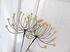 Dekorácie - kvet-púpavové brieždenie...zápich-sada - 5426196_