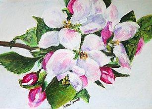 Obrazy - Nebo bez obláčka - obraz na stenu, maľba, originál - 5444519_
