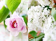 Fotografie - Prebudenie do letného rána - 5453967_
