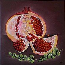 Obrazy - Granátové jablko - 5482798_