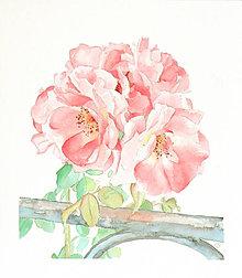 Obrazy - Růže z Caorle - originál, akvarel - 5491682_