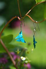 Náušnice - Motýlci modří - 5494527_