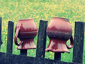 9b870508a Fotografie - Na plote po daždi - 5503312_