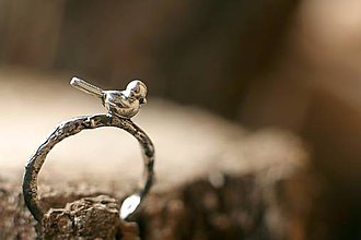 Prstene - Malý posol  - 5531251_