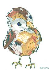 Kresby - Svetluodolný vrabček -- fixka - 5556830_