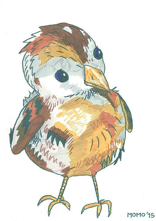 Svetluodolný vrabček -- fixka